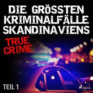 Die größten Kriminalfälle Skandinaviens - Teil 1 Foto №1