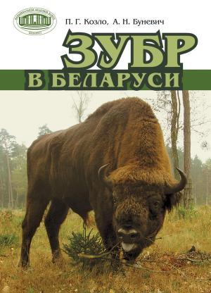 Зубр в Беларуси
