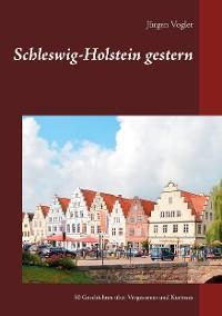 Schleswig-Holstein gestern Foto №1