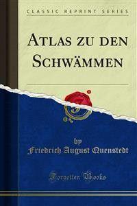 Atlas zu den Schwämmen Foto №1