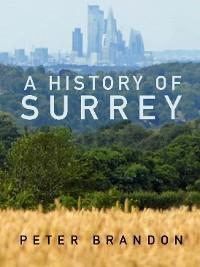 A History of Surrey photo №1