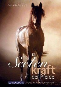 Die Seelenkraft der Pferde Foto №1