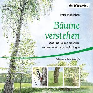 Bäume verstehen Foto №1