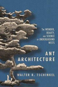 Ant Architecture photo №1