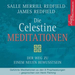 Die Celestine Meditationen Foto №1