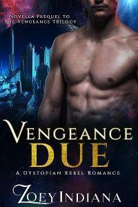 Vengeance Due: Novella Prequel to The Vengeance Trilogy photo №1