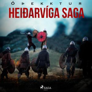 Heiðarvíga saga photo №1