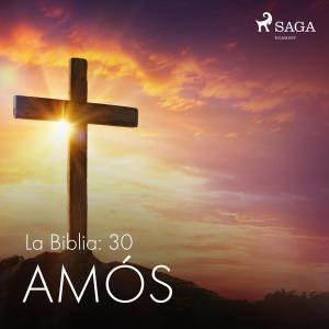 La Biblia: 30 Amós photo №1