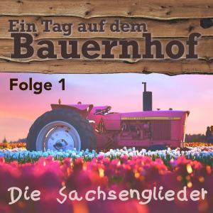 Ein Tag auf dem Bauernhof Foto №1