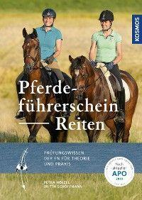 Pferdeführerschein Reiten Foto №1