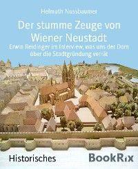 Der stumme Zeuge von Wiener Neustadt Foto №1