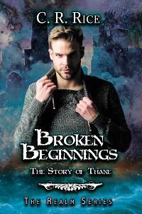 Broken Beginnings photo №1