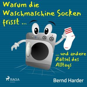 Warum die Waschmaschine Socken frisst ... ... und andere Rätsel des Alltags Foto №1