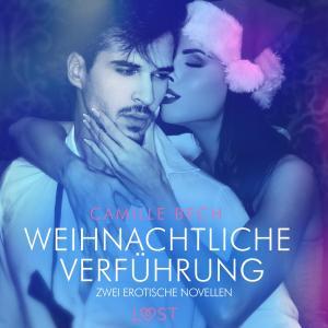 Weihnachtliche Verführung - Zwei erotische Novellen Foto №1