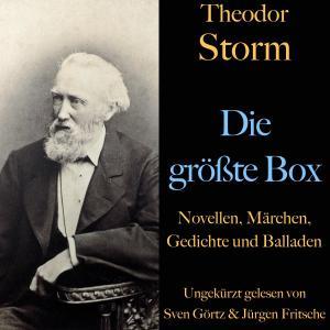 Theodor Storm: Die größte Box Foto №1