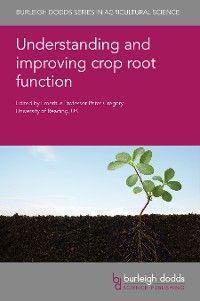 Understanding and improving crop root function