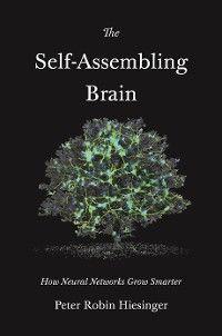 The Self-Assembling Brain photo №1