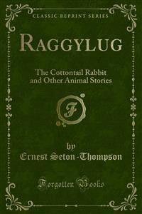 Raggylug Foto 2