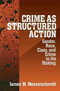 Crime as Structured Action Foto №1