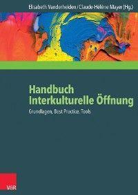 Handbuch Interkulturelle Öffnung photo №1